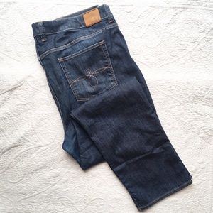 Lucky Brand Ginger Straight Jeans 22W